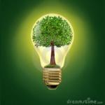 BioPower (electricity)