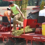 Bioenergy in the Agriculture Classroom