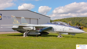 Grumman F-14A (Tomcat)
